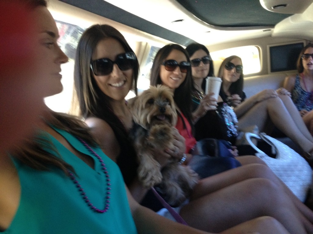 Bachelorett Party Boutique Wine Tours